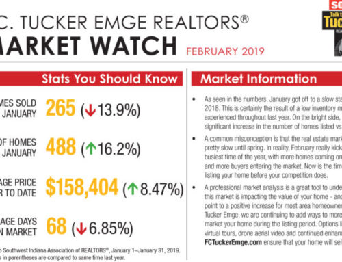 Market Watch – February 2019